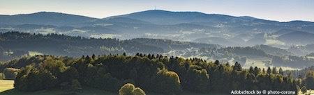 Ferienhaus Oder Hutte Im Bayerischen Wald